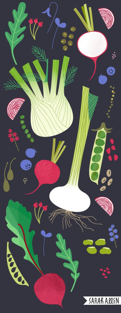Sarah Allen Illustration. Food illustration, for the love of vegetables, beans and all delicious things.