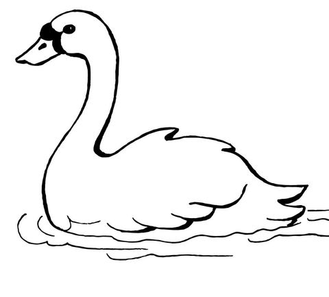 Swan Swimming Coloring page
