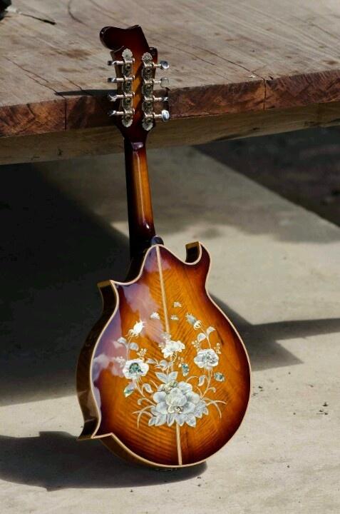 Cambodian mandolin