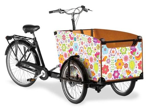 cargo bike from Holland. is there a reason I cannot have a bike like this? oh... money. right