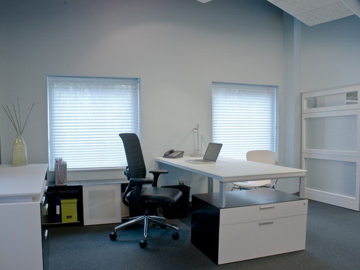 Private Office With Fluent Desk And Storage, Hero Task Seating, And Bingo  Guest Seating