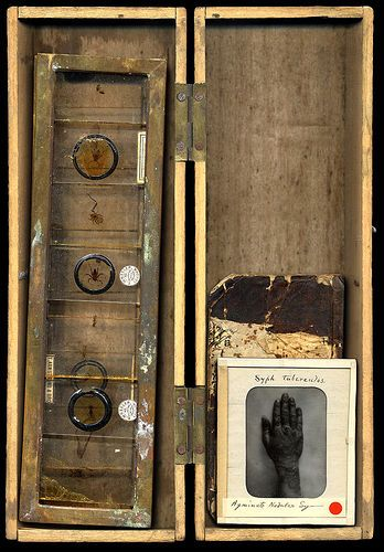 curiosity-box by Otto & Basil, via Flickr Art & Style By Adolfo Vasquez Rocca D.Phil Colecction