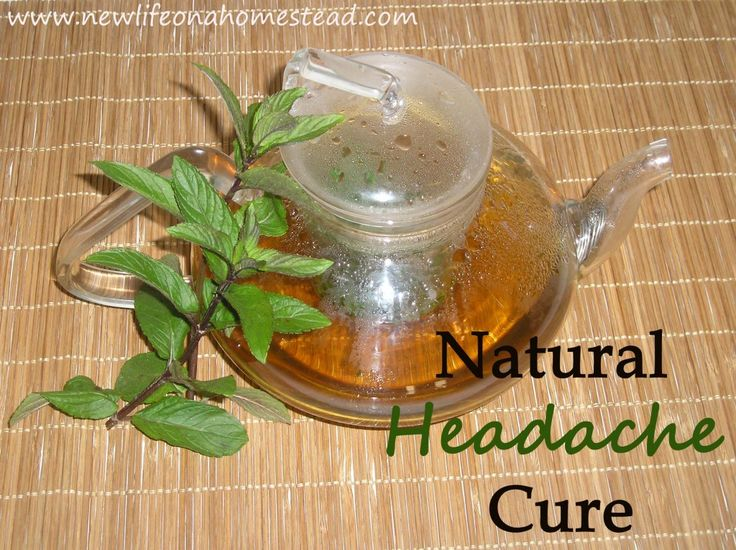 Peppermint Tea: A Natural Headache Cure- This tea almost always helps my child's headaches go away w/out the use of Tylenol; from http://newlifeonahomestead.com