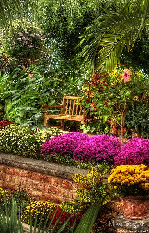 Secret garden spot...I would love to sit here and hide out with a good book...but I would put some cushions on it