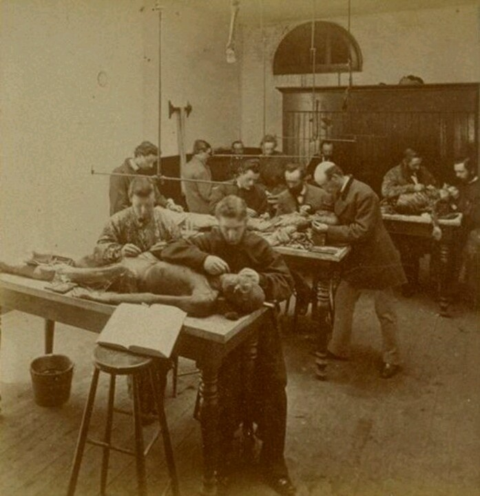 Medical school, dissecting room, 1870's