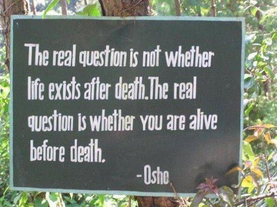 oshoOsho, The Real, Death, Scoreboard, Wisdom, Living Life, Alive, Inspiration Quotes, Real Questions
