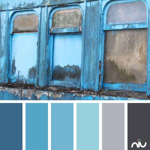 Objects Color Blue Fish – Jerusalem House