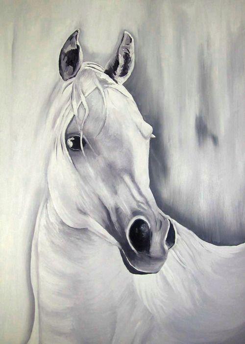 Oil portraits of Horses Heads / Retratos al Oleo de Cabezas de Caballos   Redouane Lahloul