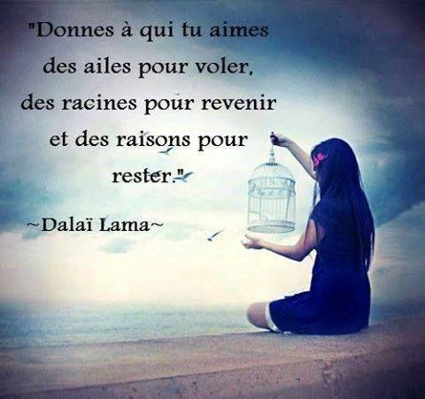 """""""Donne à qui tu aimes des ailes pour voler, des racines pour revenir et des raisons pour rester."""" - [Dalaï Lama]"""
