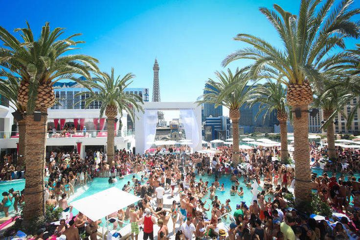 The Perfect Pool Party for Every Occasion in Las Vegas