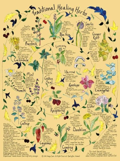 Beautiful Healing Herbs print - I've enjoyed owning this print since college!