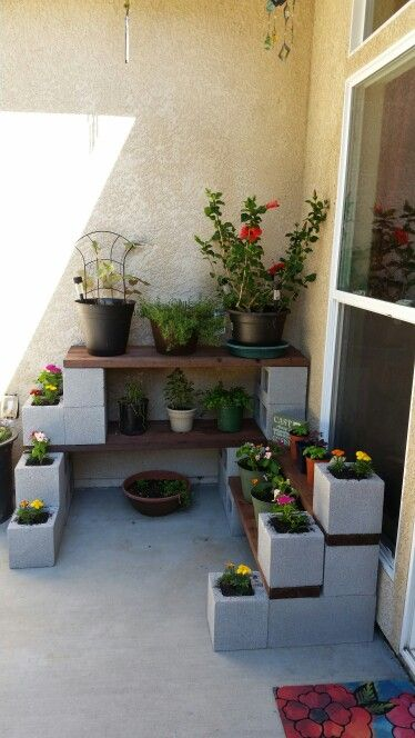 Cinder block and wood plant shelves. Cost less than $100.