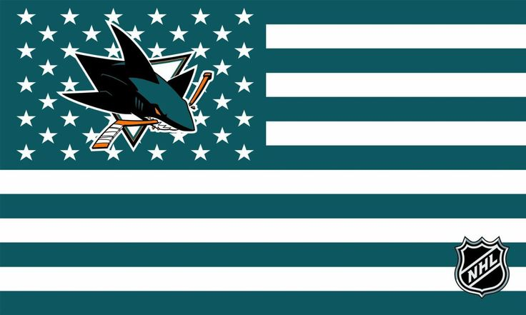 *~* Now This Is Hockey *~*  (SAN JOSE SHARKS)