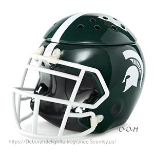 MICHIGAN STATE FOOTBALL HELMET WARMER $55.00