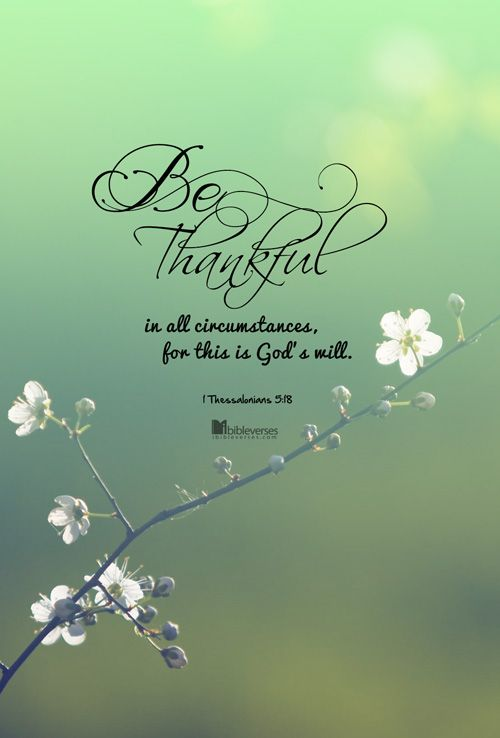 At all times live a life of thanksgiving and praise.