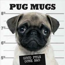 Pug Mugs - Good Pugs Gone Bad