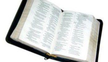 30+ Easy Bible Memory Verses for Children