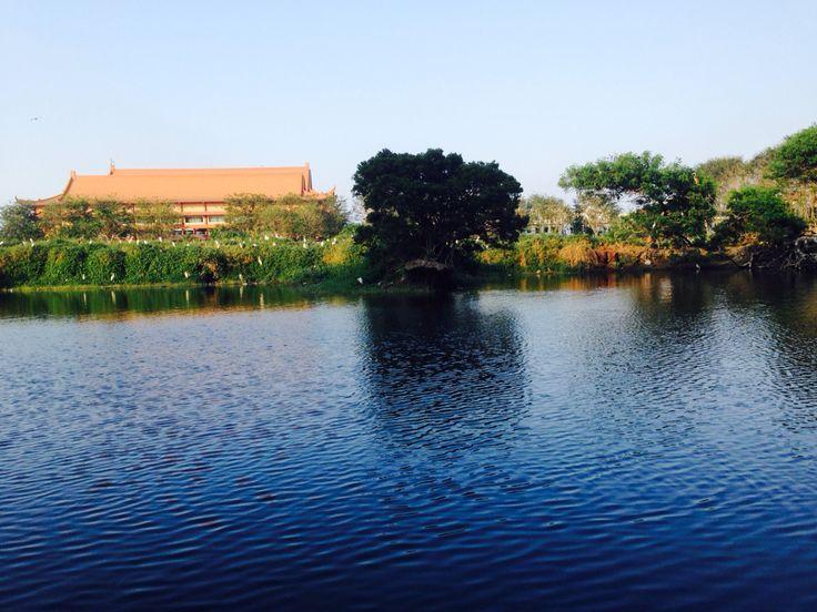 Pond, Cemara Asri