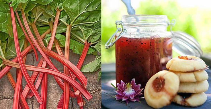 Har du trädgården full av rabarber? Då måste du prova det här fantastiska receptet!