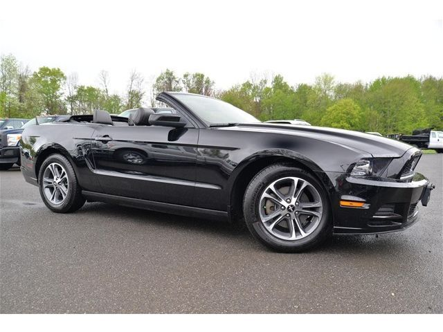 26 best saleen mustangs images on pinterest saleen mustang ford mustangs and muscle cars. Black Bedroom Furniture Sets. Home Design Ideas