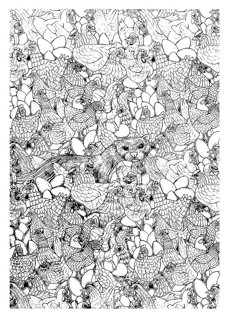 17 Best Images About Adult Coloring Pages Farm Animals On