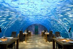 I would like to eat at this restaurant, 16 ft under the Indian Ocean.  Nice!