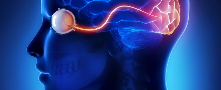 Epilepsy Drug May Treat Eye Complications in Patients With MS Multiple Sclerosis News Today