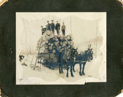 Rowan's Load, Farrel's Camp, Thessalon Lumber Co., circa 1900