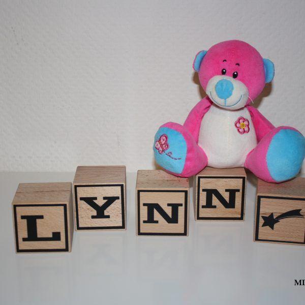 Naamblokken Lynn