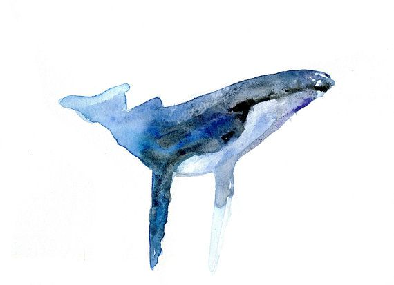 Humpback Whale Watercolor Painting Reproduction . Art Print of Animal Painting on fine Art paper. Whale painting. Whale art. on Etsy, $21.71