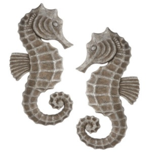 84 Best Seahorse Images On Pinterest Seahorses Fish And