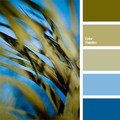 Color Palette No. 673