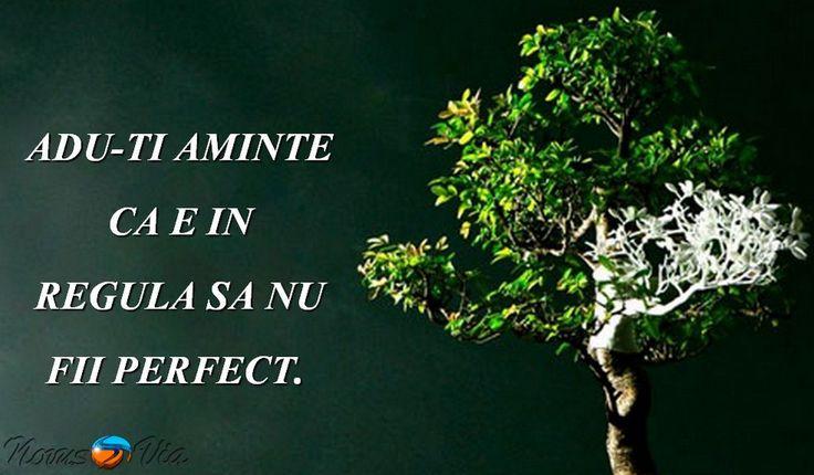 Contrar perceptiei pe care o avem, imperfect este mai mult decat perfect. Imperfect este mai bine decat perfect. De ce?…