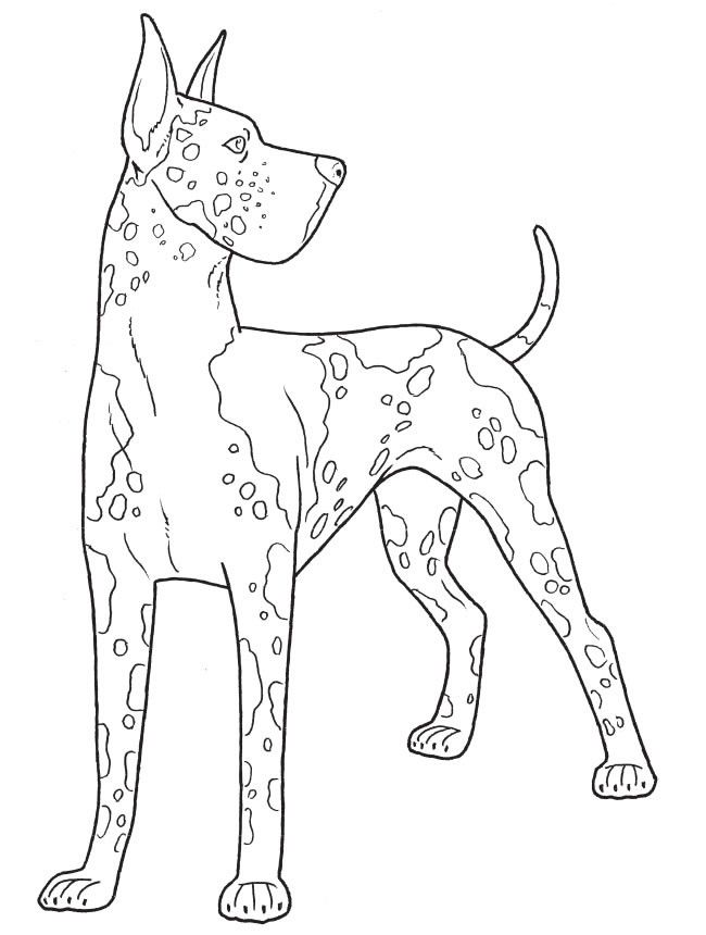 Omeletozeu With Images Dog Coloring Page Animal Coloring