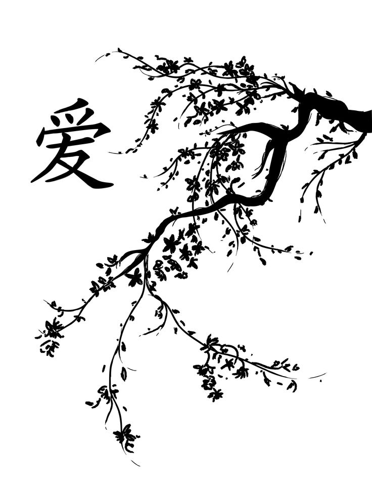 japanese cherry blossom tree black and white cherry blossoms drawing giappone cherry. Black Bedroom Furniture Sets. Home Design Ideas