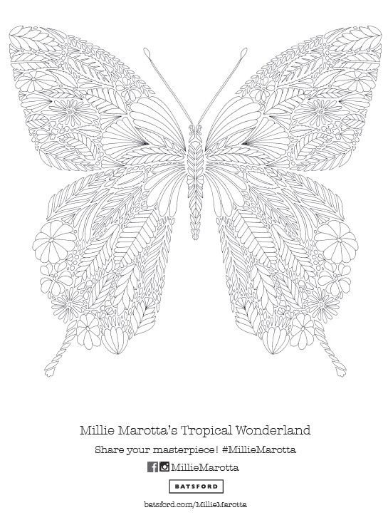 "Adult Coloring: Millie Marotta's ""Tropical Wonderland"" Butterfly Pattern Free Download!:"