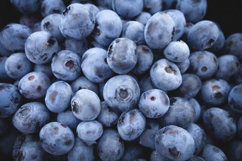 Il mirtillo nero è un ottimo antiossidante, contrasta le infiammazioni, protegge i vasi sanguigni e non solo. Scopriamo tutte le proprietà di questi preziosi frutti di bosco e i benefici per la nostra salute.