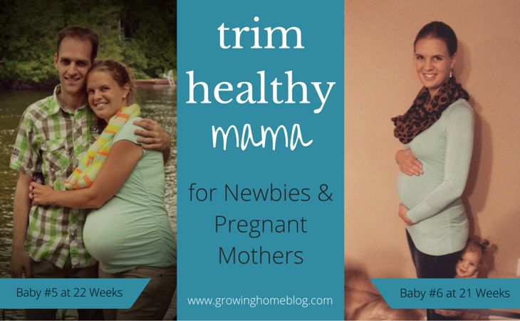 trim healthy mama for newbies and pregnant mothers (1)