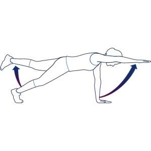 2 limb plank.  Go into a straight armed plank position in good form.  Now pick up one arm with an opposite leg.  Hold for a few seconds and go back into plank.  Do the other side.  Repeat for 10 times total, making sure you are holding and moving slowly to maximize the effort.