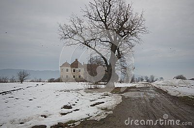 Romania. The Kemény-Bánffy castle is situated in the Cluj Napoca county waiting for some sponsor. It was built on the domain that was by then belonging to Gerendi family, as a document from 1268 shows. Here is a winter shot of the castle