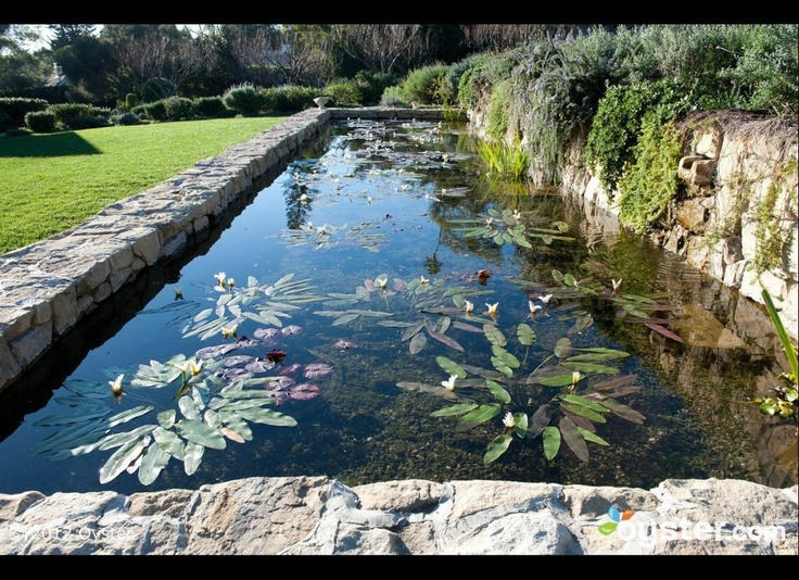 1000 images about reflection pond on pinterest gardens for Garden reflecting pool