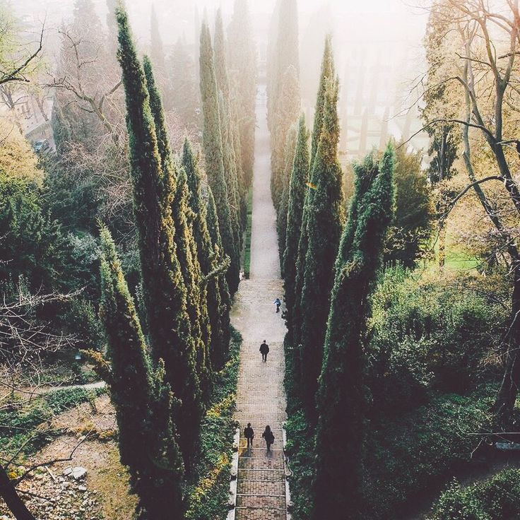 This reminds me of Chronicles of Narnia and The Lord of the Rings/The Hobbit movies...
