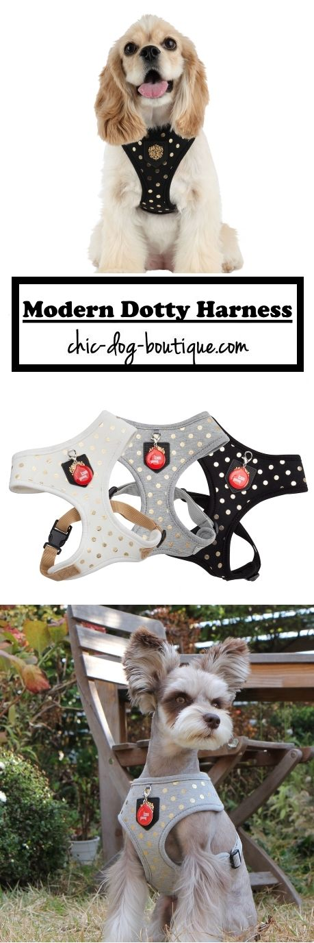 Classic meets modern in this dog walking harness available at www.chic-dog-boutique.com. Choose from Ivory, Melange Grey or Black colors in sizes S,M,L. $31.95