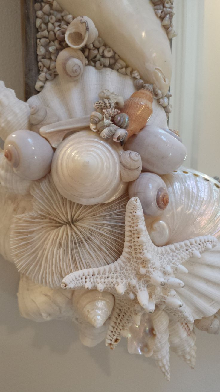 Decor nautical shell mirrors w sea glass starfish amp pearls blue - Amazing Shell Mirror Just Installed Perfect Colors Muted Serene White