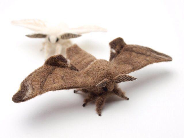 羊毛フェルトでクワコ Bombyx mandarina の成虫を作りました。 カイコの祖先と言われている野生の蛾。 カイコと似た顔で愛らしくもあり、色黒で毛深くてかっこいい!