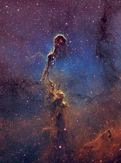 The Elephant's Trunk in the constellation of Cepheus.   Photograph: Bill Snyder/Royal Observatory