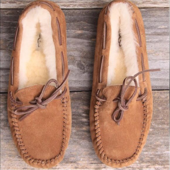 chestnut dakota ugg slippers