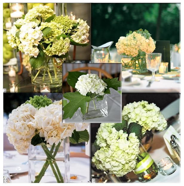 Best images about hydrangea floral on pinterest