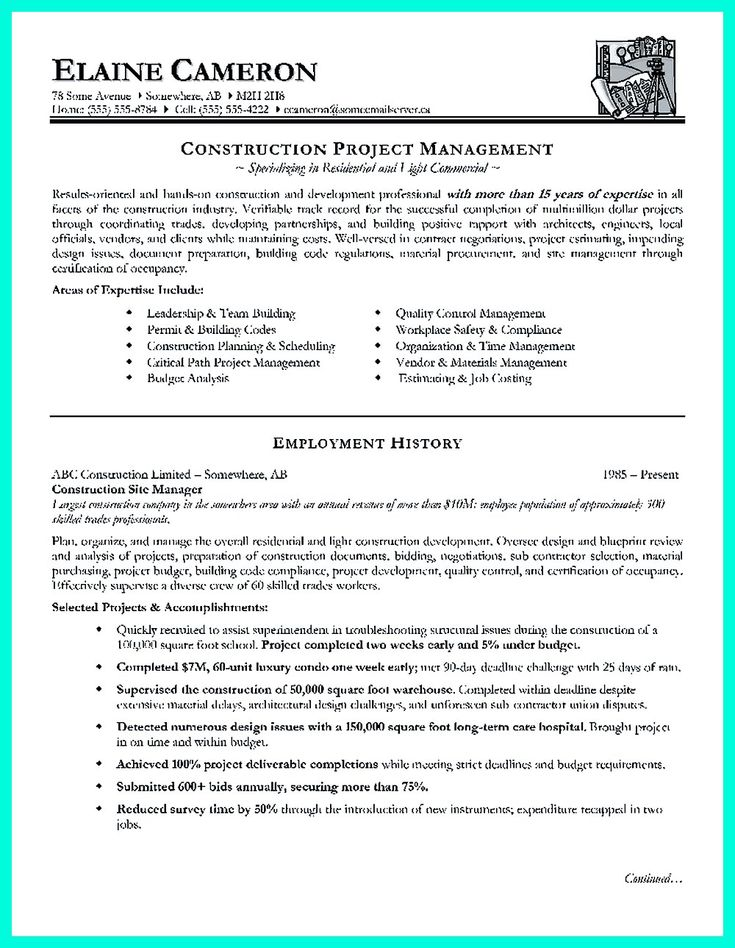 construction project manager resume for experienced one must be made with professional profile
