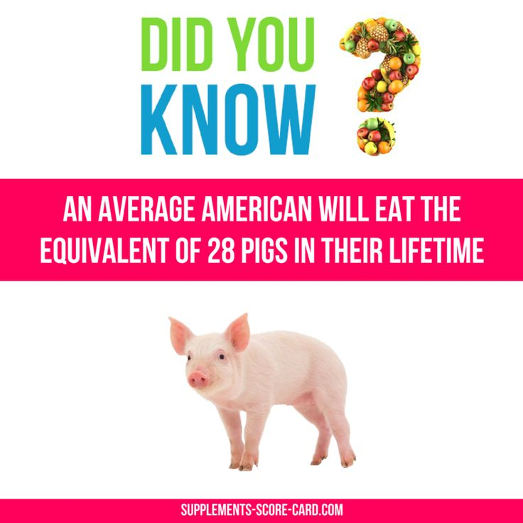 An average American will eat the equivalent of 28 pigs in their lifetime